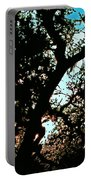 Abstract 224 Portable Battery Charger