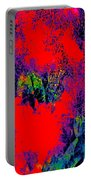 Abstract 248 Portable Battery Charger