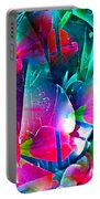 Abstract 250 Portable Battery Charger