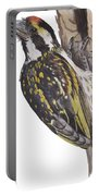 Acacia Pied Barbet Portable Battery Charger
