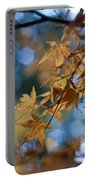 Acer Autumn Portable Battery Charger