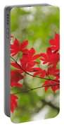 Acer Leaves Portable Battery Charger