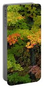 Adirondack Autumn Portable Battery Charger