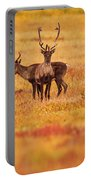 Adult Caribou In The Fall Colours Portable Battery Charger