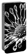 African Daisy In Black And White Portable Battery Charger