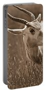 African Grassland Feeder 2 Portable Battery Charger