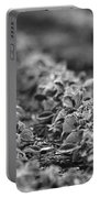 Agriculture- Soybeans 2 Portable Battery Charger