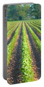 Agriculture-soybeans 5 Portable Battery Charger