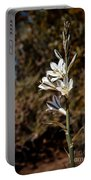 Ajo Lily Portable Battery Charger