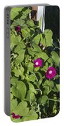 Alabama Wild Pink Morning Glories Portable Battery Charger