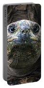 Aldabra Tortoise Portable Battery Charger
