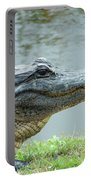 Alligator Cameron Prairie Nwr La Portable Battery Charger