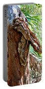 Alligator Cypress Knot Portable Battery Charger