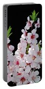 Almond Blossom 0979 Portable Battery Charger