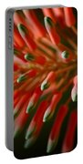 Aloe Bloom Portable Battery Charger