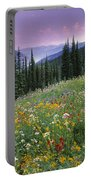 Alpine Wildflower Meadow, Mount Portable Battery Charger