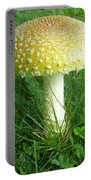 Amanita Muscaria - Guessowii Mushroom Portable Battery Charger