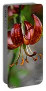Amber Martagon Portable Battery Charger