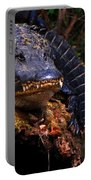American Alligator On A Cypress Tree Portable Battery Charger