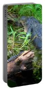 American Alligators Portable Battery Charger