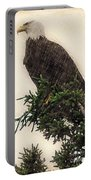 American Bald Eagle In Tree Portable Battery Charger by Dan Friend