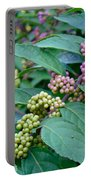 American Beautyberry Shrub - Callicarpa Americana Portable Battery Charger