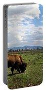American Buffalo 10 Portable Battery Charger