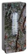 American Dagger Moth Caterpillar Portable Battery Charger