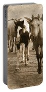 American Quarter Horse Herd In Sepia Portable Battery Charger