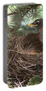 American Robin Portable Battery Charger