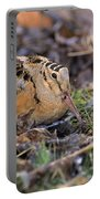 American Woodcock Bird Portable Battery Charger