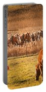 Amish Transportatin All Sizes Portable Battery Charger