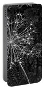 Anatomy Of A Flower Monochrome 2 Portable Battery Charger