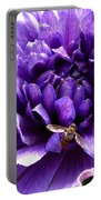 Anemone Coronaria Named Lord Lieutenant Portable Battery Charger