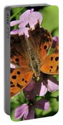 Anglewing Butterfly Portable Battery Charger