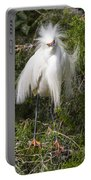 Angry Bird Snowy Egret In Breediing Plumage Portable Battery Charger