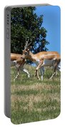 Antelope Portable Battery Charger
