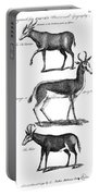 Antelopes Portable Battery Charger
