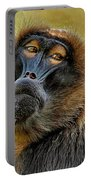 Ape Portable Battery Charger