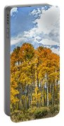 Apen Trees In Fall Portable Battery Charger
