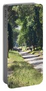 Appian Way In Rome Portable Battery Charger