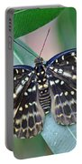 Archduke Butterfly Portable Battery Charger