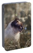 Are You Dreaming About Me - Siamese Feral Cat Portable Battery Charger