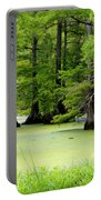 Arkansas Lake With Cypresses Portable Battery Charger
