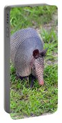 Armored Armadillo 01 Portable Battery Charger