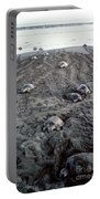 Arribada Of Olive Ridley Turtles, Costa Portable Battery Charger