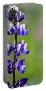 Arroyo Lupine  Portable Battery Charger
