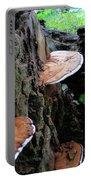 Artist Conk Mushroom  Portable Battery Charger