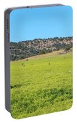 Ash Creek Valley II Portable Battery Charger