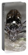 Asian Long-horned Beetle Portable Battery Charger